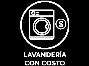 Lavado con costo
