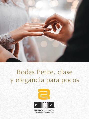 Boda Petitie - Camino Real Pedregal